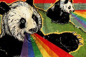 animals rainbows artwork panda
