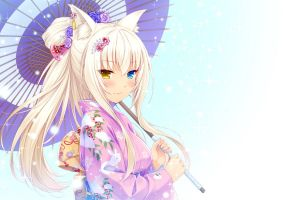 anime nekomimi anime girls neko para coconut (neko para) umbrella heterochromia animal ears kimono cat girl