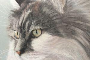 artwork animals cats painting