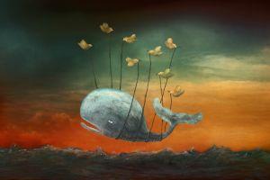artwork birds surreal animals sea moby dick