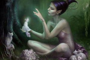 artwork elves fantasy art