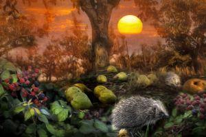 artwork nature hedgehog fruit animals