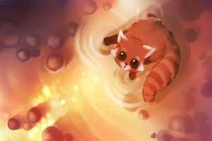 artwork red panda animals