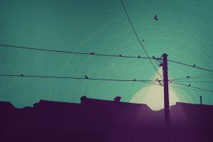 artwork sky birds rooftops