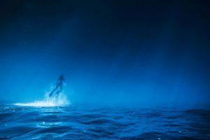 artwork water blue underwater