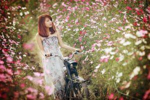 asian flowers motors nature