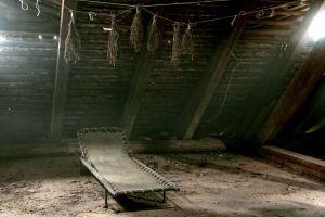 attics building dirt