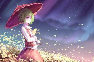 aurorae anime night jacket shirt umbrella skirt green hair kazami yuuka flower petals touhou wind short hair anime girls