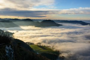austria mist morning mountains landscape shrubs nature clouds valley field