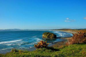 beach chile shrubs sea blue nature island landscape rock sand grass sky hills