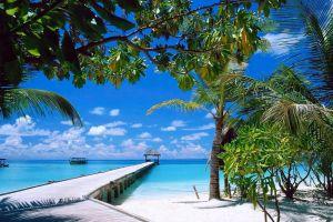 beach sand sea tropical summer landscape boat nature