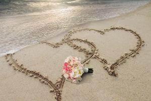 beach sea flowers nature love heart (design)