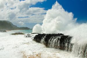 beach sea nature
