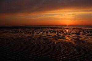 beach sea sand sun