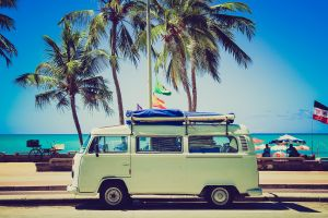 beach tropical combi palm trees car volkswagen summer