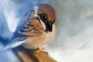 birds 2012 (year) artwork animals