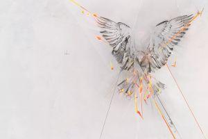 birds simple background phoenix fire animals artwork