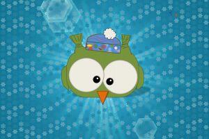 birds snow snow animals owl