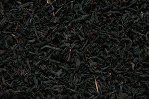 black tea plant photography nature