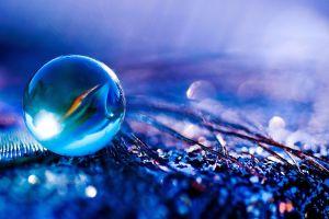 blue macro purple glass