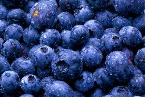 blueberries fruit macro food wet