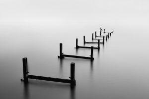blurred nature wood monochrome reflection ruin sea water landscape sticks long exposure calm pier