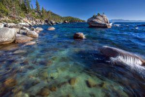 bonsai lake tahoe coast landscape lake rock