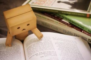 books cardboard danbo