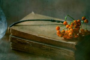 books vintage fruit