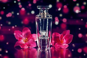 bottles flowers plants potions