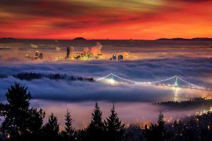 building lights sunset trees nature landscape cityscape vancouver bridge mist