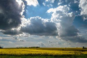 bulgaria landscape field clouds