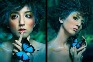 butterfly women fantasy art