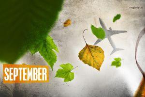 calendar aircraft fall leaves september passenger aircraft forest