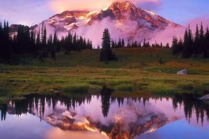 calm water reflection lake landscape field mountains nature pine trees snowy peak clouds trees forest