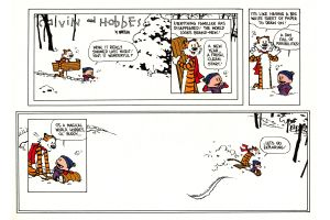 calvin and hobbes cartoon comics