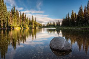 canada water calm british columbia reflection landscape nature sunset lake forest trees