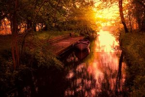 canal yellow dock calm sunset nature boat shrubs water trees landscape grass