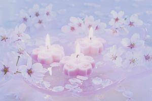 candles wax lights