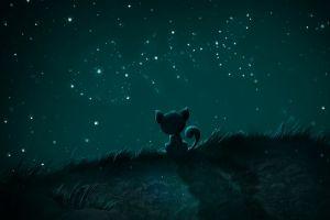 cats fish artwork stars night sky