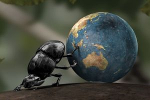 cgi earth insect crabs