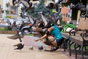 city women pigeons birds nature
