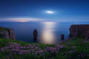 cliff sea wildflowers green pink landscape sky nature horizon rock blue moonlight water moon