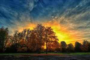 clouds fall sky sunlight