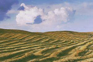 clouds landscape agro (plants)