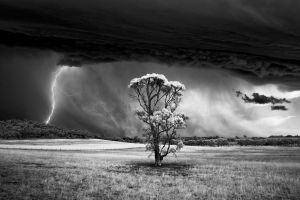 clouds monochrome panoramas lightning supercell (nature) field landscape nature wind storm hills trees