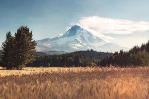 clouds photo manipulation trees mount hood mountains field forest oregon