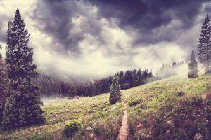 clouds sky trees plants landscape nature