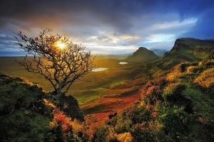 clouds skye shrubs valley nature sky mountains landscape dead trees scotland sunlight lake