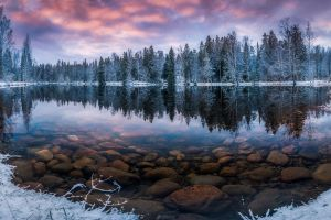 cold winter snow water landscape finland trees reflection nature lake forest morning